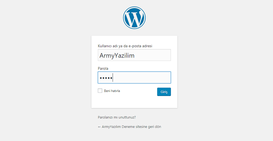 WordPress Admin panel girişi